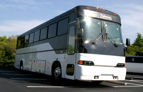 FT Myers Party Bus Rentals