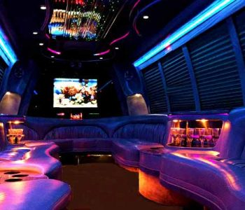 18 passenger party bus rental Harlem Heights