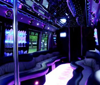 22 people party bus limo Harlem Heights
